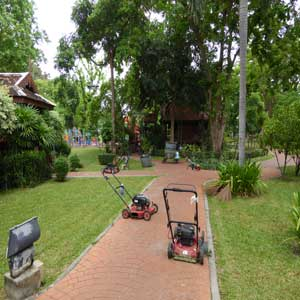 Mowing day in Saranrom Park